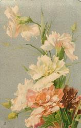 carnations white above, orange & red at base