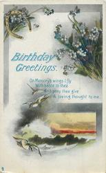 BIRTHDAY GREETINGS  , seascape
