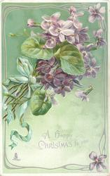 A HAPPY CHRISTMAS TO YOU  bunch of purple violets purple ribbon, green background, ornate border