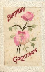 BIRTHDAY GREETINGS  large inset, two pink/white roses