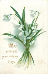 MAY HAPPINESS YOUR BIRTHDAY BLESS bunch of snowdrops