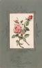 A HAPPY CHRISTMAS oblong silk inset of pink roses, pink cardstock
