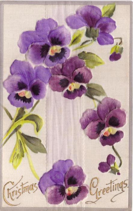 CHRISTMAS GREETINGS in gilt, pansies and leaves centered on ribbon, lower space for greeting