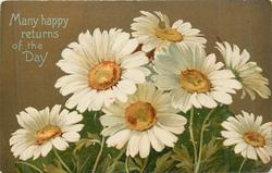 MANY HAPPY RETURNS OF THE DAY  seven white daisies, one on top has broken petal