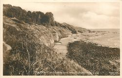 THE BEACH AND CASTLE COVE, NITON UNDERCLIFFE, I.O.W.