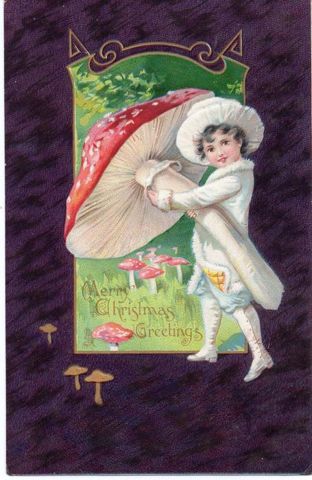 MERRY CHRISTMAS GREETING  boy in white suit holds very large mushroom