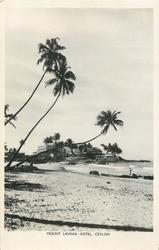 view of beach, sea & palms,hotel distant back