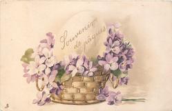 violets around egg in wicker basket