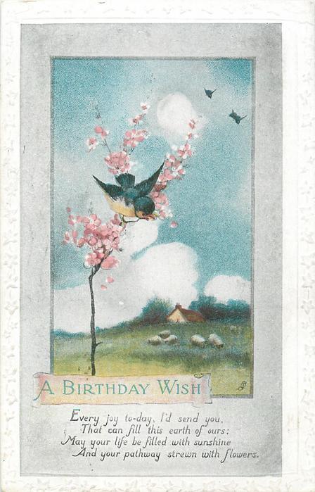 A BIRTHDAY WISH blue birds & blossom