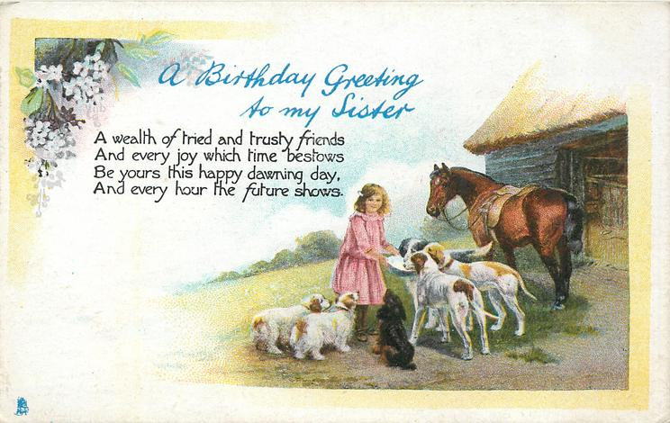 A BIRTHDAY GREETING TO MY SISTER girl feeding dogs, horse & barn right