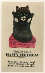 WISHING YOU A HAPPY BIRTHDAY, GOOD LUCK BE YOUR FRIEND... AFTER  cat in old boot, A SPOT OF GOOD LUCK