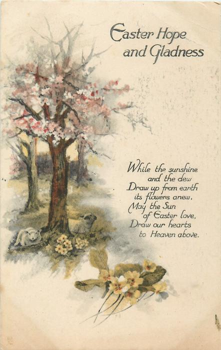 EASTER HOPE AND GLADNESS  WHILE THE SUNSHINE AND THE DEW DRAW UP FROM EARTH/HEAVEN ABOVE tree trunks, blosson, primroses