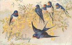 6 blue/orange birds(swallows), two flying