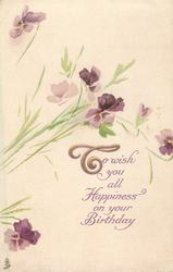 TO (T illuminated) WISH YOU ALL HAPPINESS ON YOUR BIRTHDAY  sparse violets above