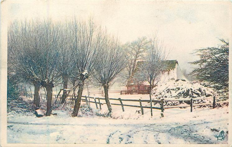 snow covered landscape, cottage behind pollarded trees right, road front