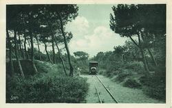 LE TRAMWAY DU GOLF A TRAVERS LA FORET
