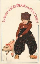 Dutch boy leads resisting pig