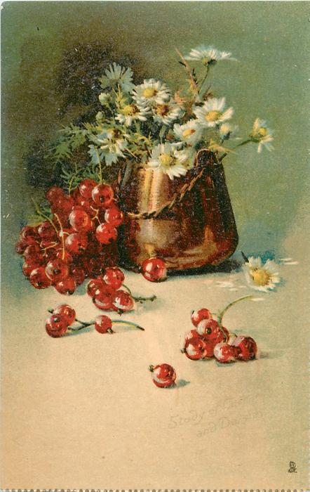 STUDY OF REDCURRANTS AND DAISIES