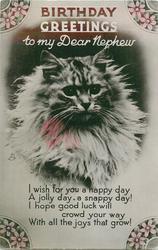BIRTHDAY GREETING TO MY DEAR NEPHEW  head of cat
