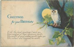 GREETINGS FOR YOUR BIRTHDAY owl perched, moonlight