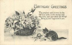BIRTHDAY GREETINGS  black & white basket of roses, kitten plays with bow