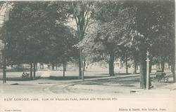 VIEW OF WILLIAMS  PARK, BROAD AND WILLIAMS STS.