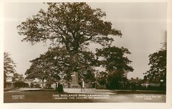 THE MIDLANDS OAK LEAMINGTON (MARKING THE CENTRE OF ENGLAND)
