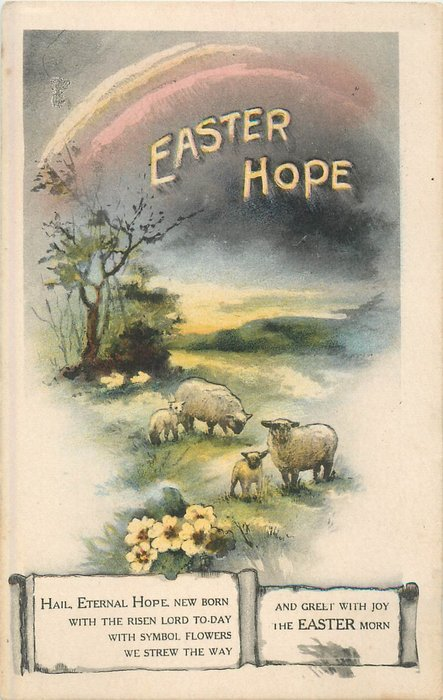 EASTER HOPE sheep in meadow under rainbow