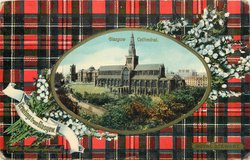 CATHEDRAL  ROYAL STEWART tartan