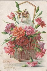 cat sits in wicker basket filled with red & pink carnations