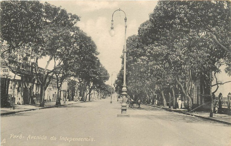 AVENIDA DE INDEPENDENCIA