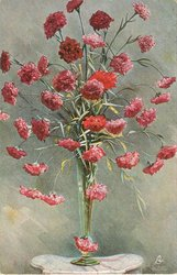vase of crimson carnations