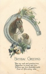 BIRTHDAY GREETINGS  horse & dog under hoseshoe