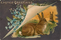 EASTER GREETINGS two rabbits under turned up page & forget-me-nots, one rabbit looks right/faces right, sunset behind