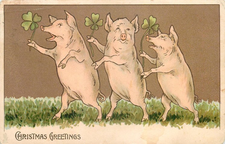 CHRISTMAS GREETINGS, three pigs on hind legs dance left with 4 leaf clovers