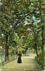 THE AVENUE WILTON LODGE PARK