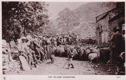 THE VILLAGE SHEEP-FAIR